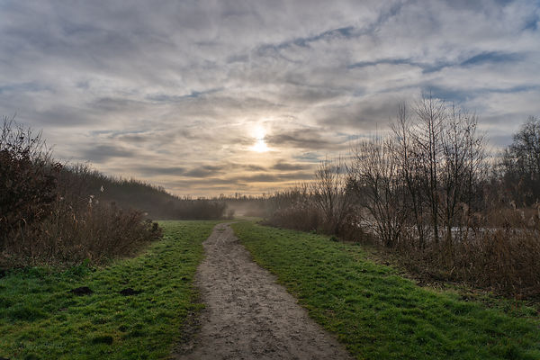 Path towards the rising sun