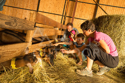 ferme-famille-HD_focus-outdoor-0001
