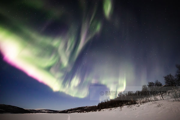 Northern lights with purple fringe above the frozen Teno river in Utsjoki, Finnish Lapland