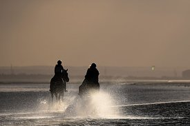 Shoeburyness. United Kingdom. 28 October 2020. Horses on the beach. MANDATORY Credit \6001332#2\/Sport in Pictures - NO UNAUT...