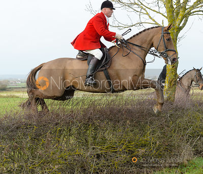 jumping a hedge at Sheepwash