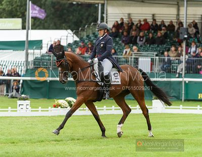 Bruce Davidson Jr and JAK MY STYLE - Dressage - Land Rover Burghley Horse Trials 2019