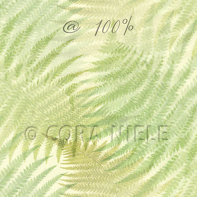 Green Ferns 100%