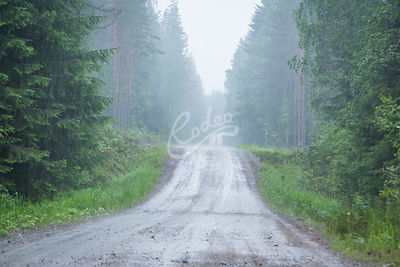 Misty dirt road