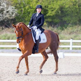 05/04/2019 - British Dressage - Brook Farm training centre
