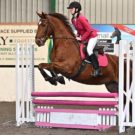 19/01/2020 - Class 6 - Unaffiliated showjumping - Brook Farm training centre