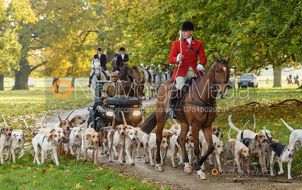 Simon Hunter, hounds arriving at the meet - Fitzwilliam Hunt Opening Meet