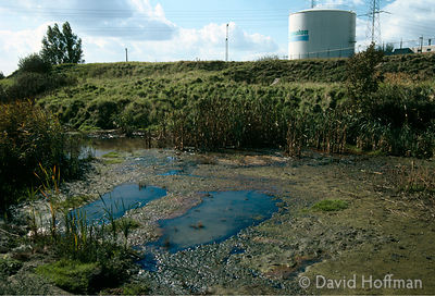 Tributary of River Schelde, Antwerp, Belgium polluted by sewage & industrial waste.