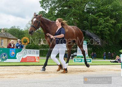 Emily Prangnell and DHI BEAUNESSE at the trot up, Equitrek Bramham Horse Trials 2019