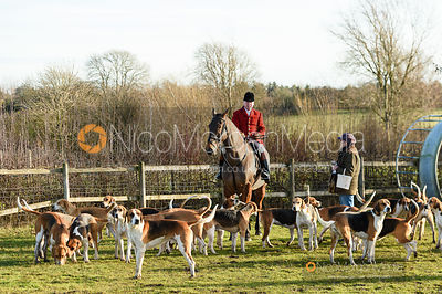 John Holliday, hounds at the meet. The Belvoir Hunt at Holwell 7/12