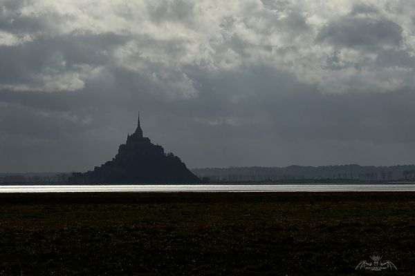 Le Mont Saint-Michel • Manche • Normandie • France