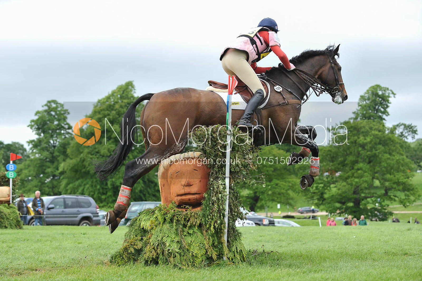 Rebecca Crosbie-Starling and PADDY'S GOLD - Equitrek Bramham International Horse Trials 2012