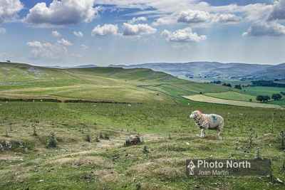 ORTON 37A - Great Asby Scar from Beacon Fell