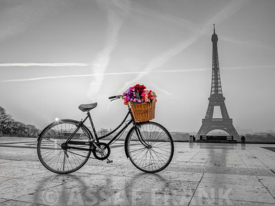 Bicycle with a basket of flowers next to the Eiffel tower, Paris, France