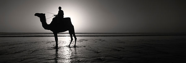 'I'd walk a mile for a Camel'  Agadir 2002   Photographer Neil Emmerson