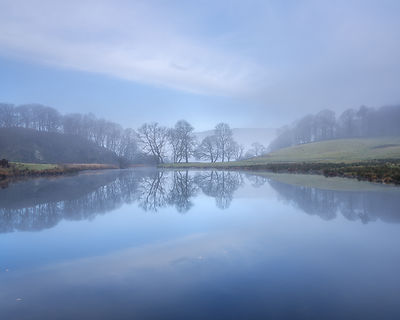 Winter_trees_in_mist_-_River_Brathay