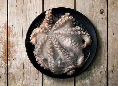 Raw octopus on dark plate over wooden background, top view