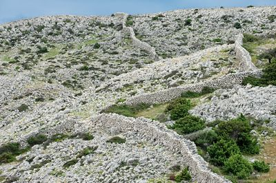 Hiking trail and dry stone walls on Rab, Croatia