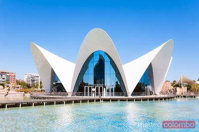 The Oceanographic at daytime, City of Arts and Sciences, Valencia, Spain