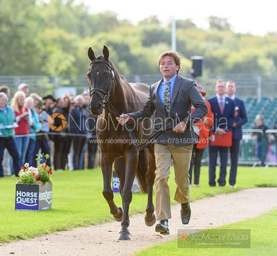 Dan Jocelyn and BLACKTHORN CRUISE at the trot up, Land Rover Burghley Horse Trials 2019