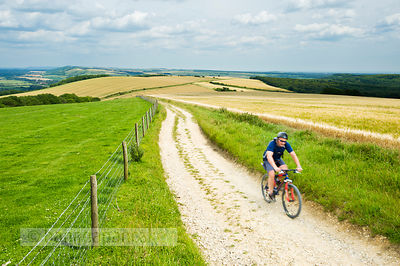 Cyclist on the South Downs Way