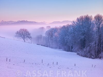 Winter landsacpe at dusk with snow, Switzerland