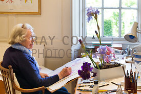 Ann Fraser in her studio painting irises