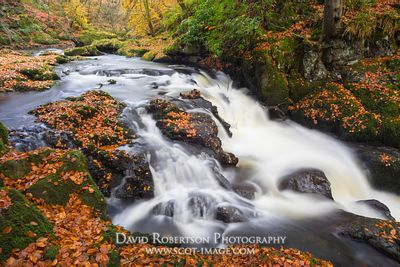 Image - Cascading River Devon, Rumbling Bridge, Scotland