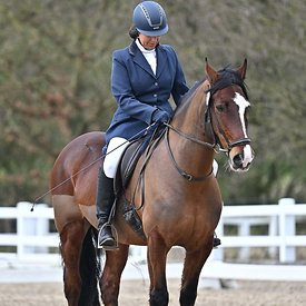14/03/2020 - Class 8 - Unaffiliated dressage - Brook Farm training centre - UK