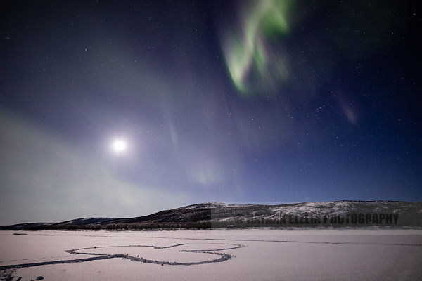 Northern lights above a clover on the snow on the frozen Teno River on Saint Patrick Day in Finnish Lapland (Utsjoki)