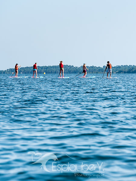 Stand up Paddle lac de Biscarrosse