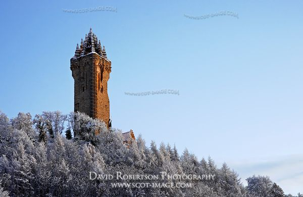 Image-The National Wallace Monument with frosty trees