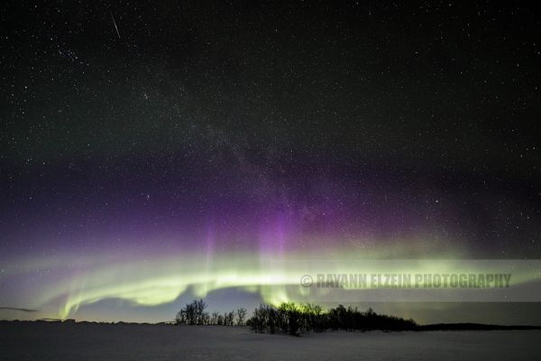 Aurora with purple layer on top of trees