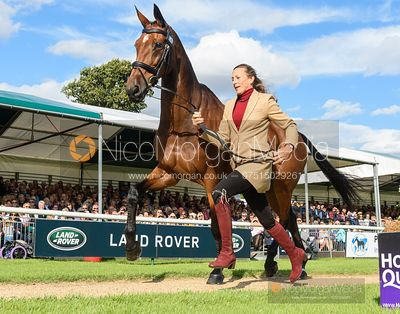Sarah Bullimore and REVE DU ROUET at the trot up, Land Rover Burghley Horse Trials 2019