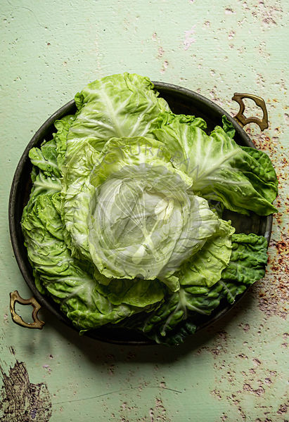 Fresh head of cabbage in an old tray over a green rusty surface