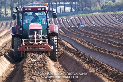 Image - Case tractor with a Scanstone 2 row potato bed former