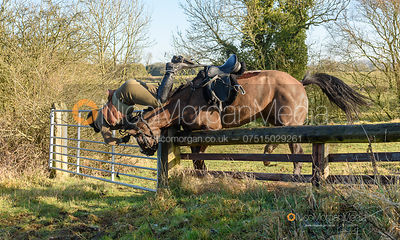 Falling at a fence near Knossington. The Cottesmore Hunt at Priory Farm 21/1