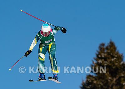 Freestyle_Skiing_Cross