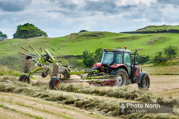 HAYMAKING 71A - Haymaking