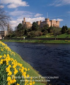 Image - Inverness Castle, River Ness, Spring daffodils
