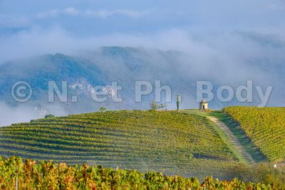 VIGNOBLE CAHORS, LOT, FRANCE // VINEYARDS, CAHORS, FRANCE