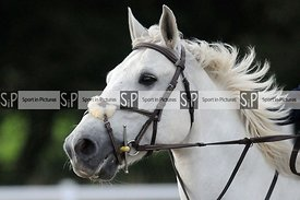 Stapleford Abbotts. United Kingdom. 26 July 2020. Class 11. MANDATORY Credit Ellen Szalai/Sport in Pictures - NO UNAUTHORISED...