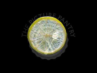 Backlit portrait of a lime slice