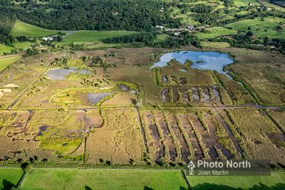 SILVERDALE 45A - Aerial view of Leighton Moss