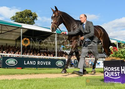 Tim Price and XAVIER FAER at the trot up, Land Rover Burghley Horse Trials 2019