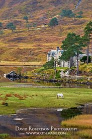 Image - Affric Lodge, Glen Affric, Inverness, Highland, Scotland