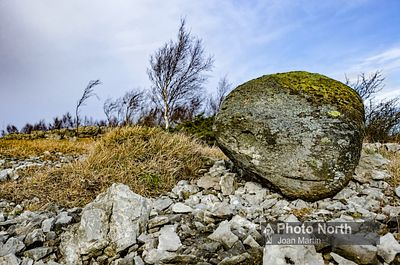 WHITBARROW 27A - Erratic boulder