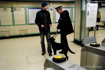 071129_DogDrugCheck_006 Police drug check with sniffer dogs checking passengers at Mile End Underground station, London. Dece...