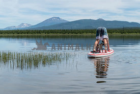 Man on stand up paddle board with small dog doing downward dog