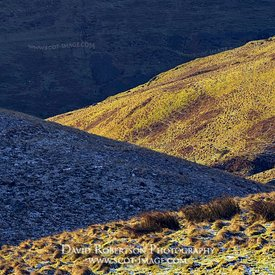 Prints & Stock Image - Folds of hills looking towards Alva Glen in the Ochils, Clackmannanshire, Scotland